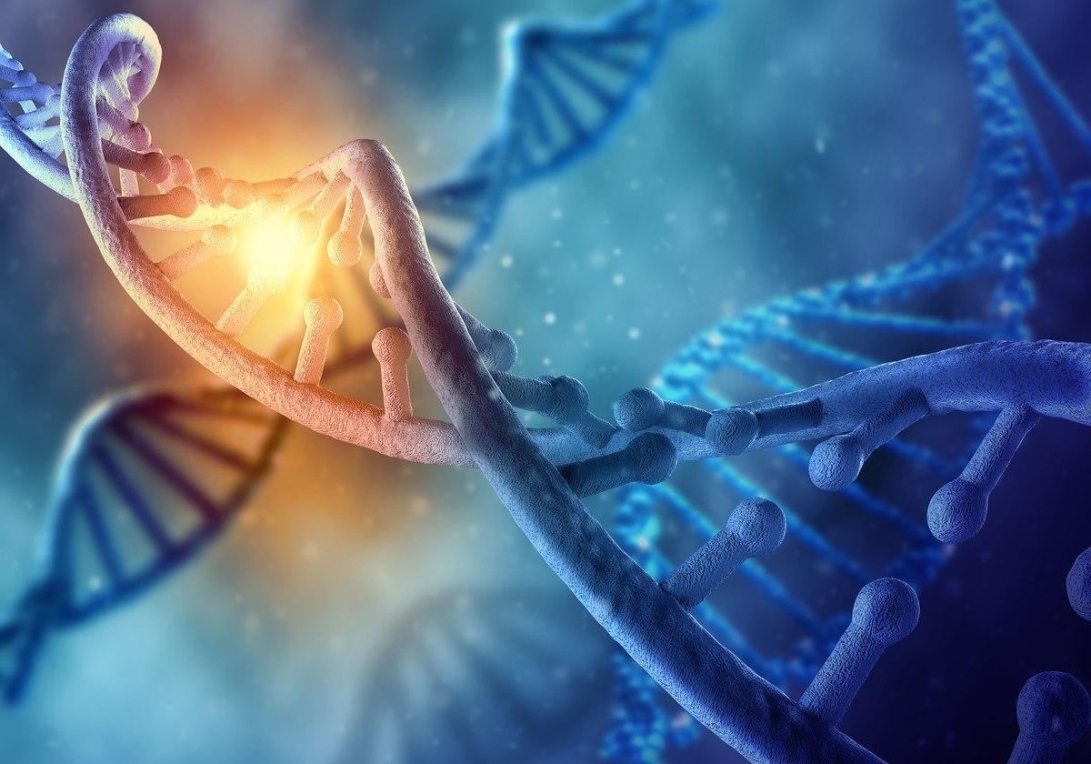 Kapazitive Hyperthermie als Alternative zur Brachytherapie bei DNA-Schäden in der menschlichen Prostata-Zelllinie (DU-145)